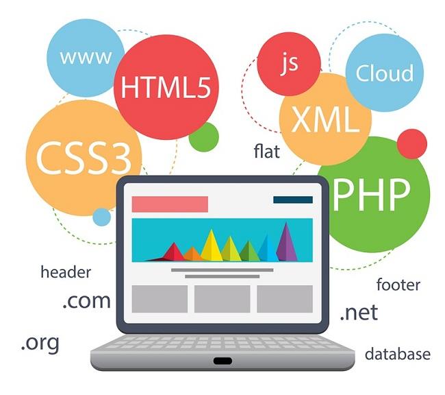 Web Design Company Oman